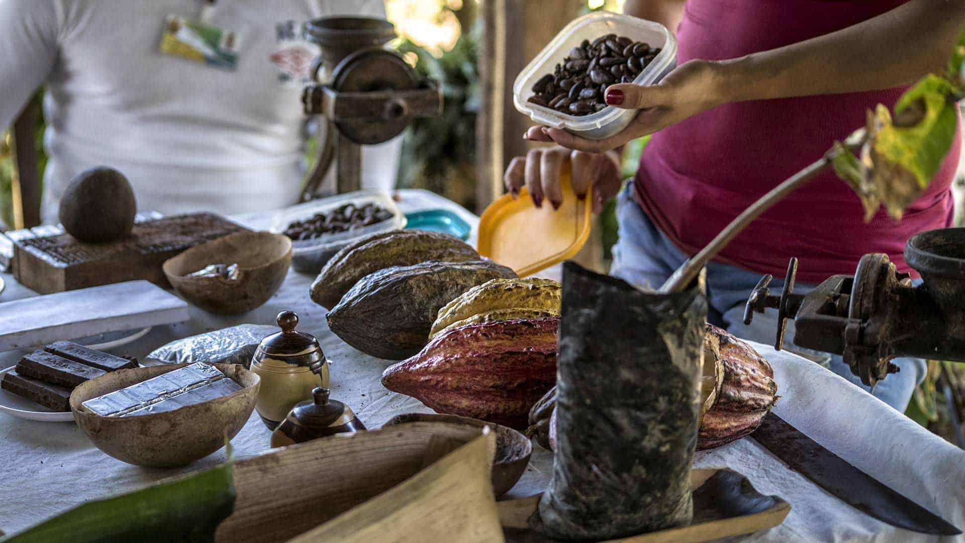 A0002 Cacao Autrement 03 cuba autrement