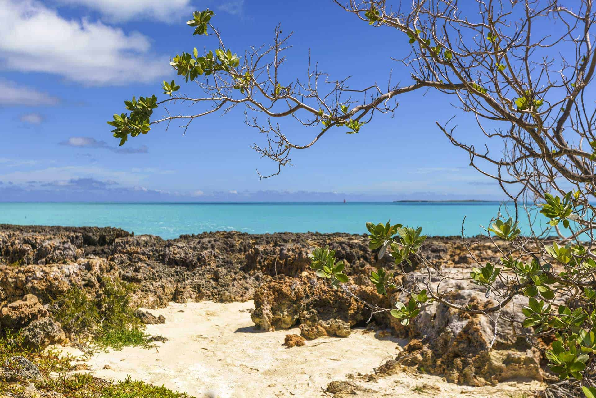 A0211 journee plage cayo santa maria 03 cuba autrement