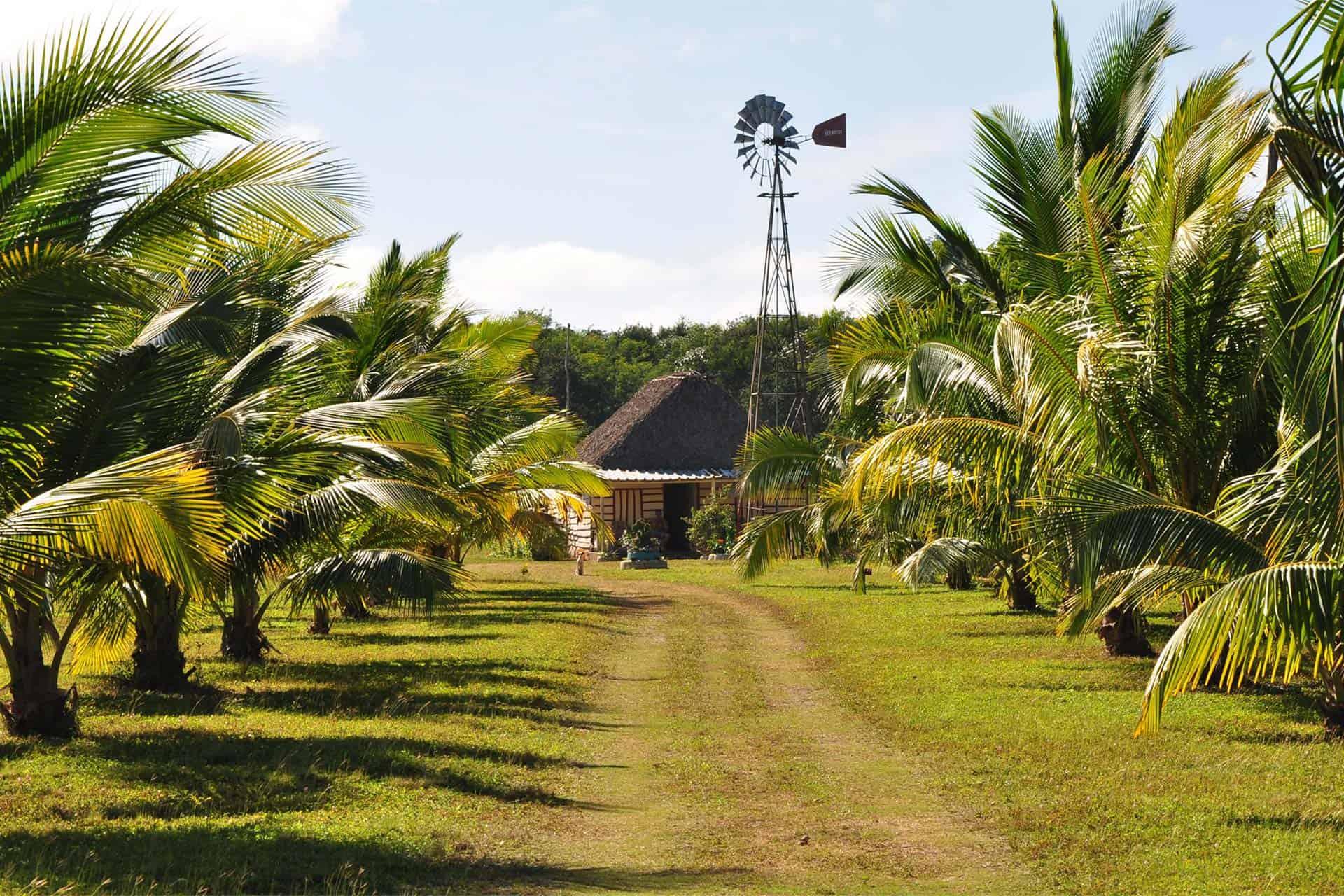 cienaga de zapata ferme moulin nature cuba autrement