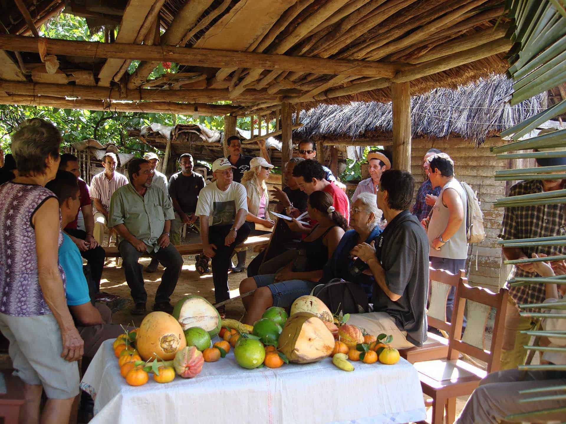 baracoa rencontre cacao fruits cuba autrement